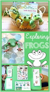 Exploring Frogs Unit Study and Lapbook