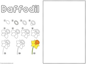Flower Drawing Tutorials (2)