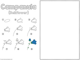 Flower Drawing Tutorials (3)