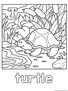 T is for Turtle Coloring