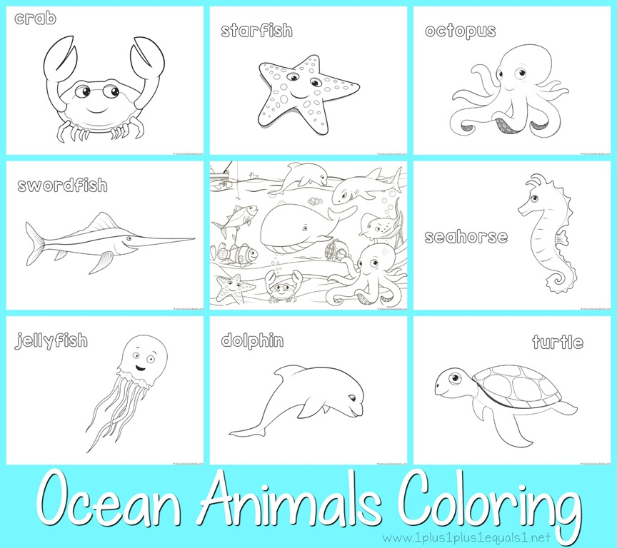 - Just Color! Ocean Animals - 1+1+1=1