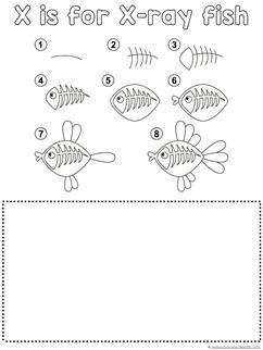 X-Ray Fish Drawing Tutorial