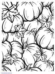 Pumpkin Coloring (1)