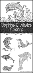 Dolphins and Whales Coloring Pages