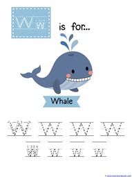 Water Animals Tracing (24)