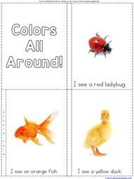 Color Easy Reader (2)