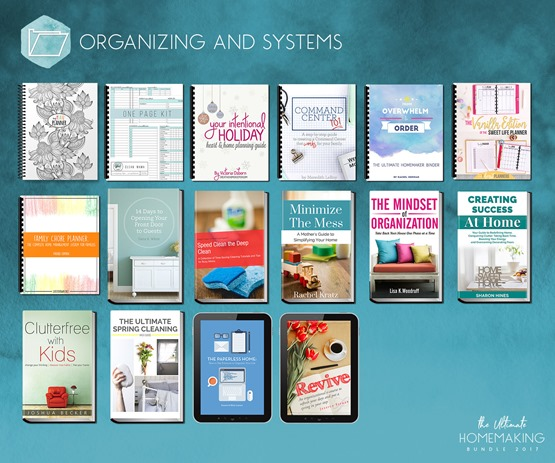 Organizing_and_Systems