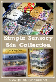Simple Sensory Bin Collection