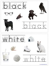 Tracing Color Words (5)