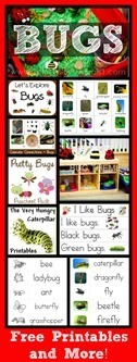 Bug-Theme-Collection6[2]