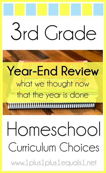 3rd Grade Homeschool Curriculum Year End Review