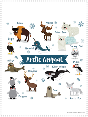 Arctic Animal Printable Poster