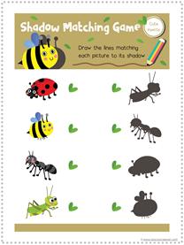 Bug Fun Pack (4)