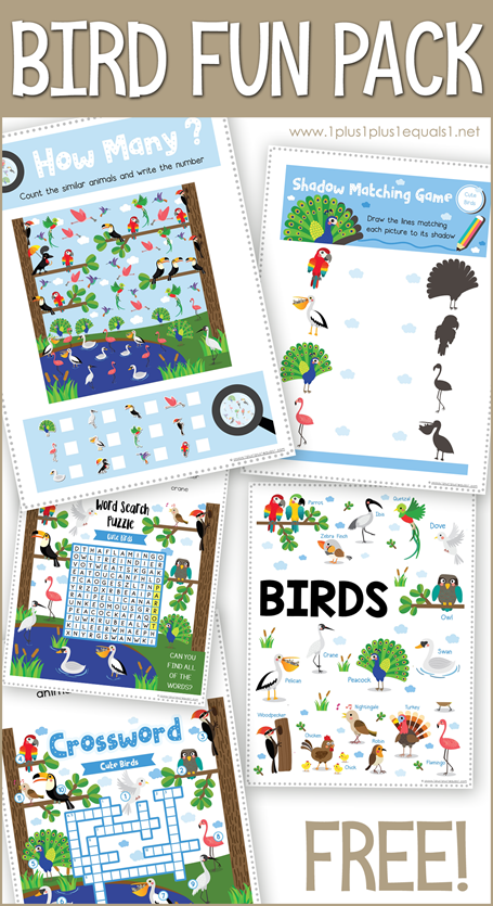 BIRD Fun Pack