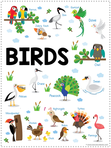 Bird Fun Pack Free Printables (2)