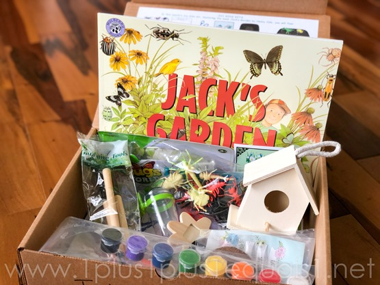 Jack's Garden Ivy Kids Kit-2