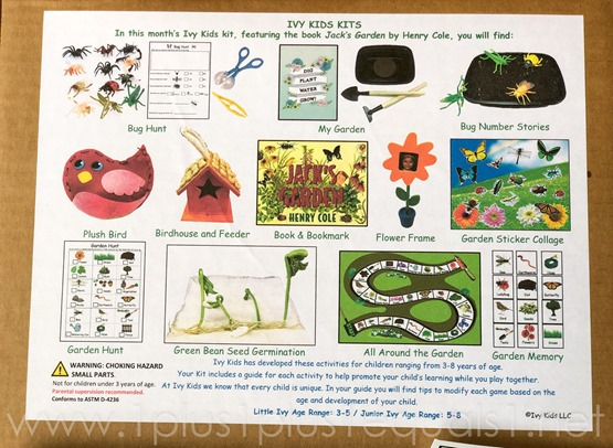 Jack's Garden Ivy Kids Kit
