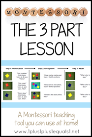 The Montessori 3 Part Lesson