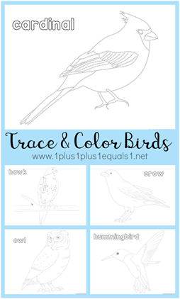 Trace and Color Birds Printables