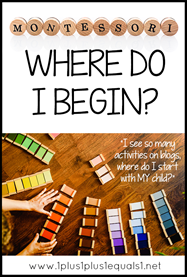 Where Do I Begin with Montessori