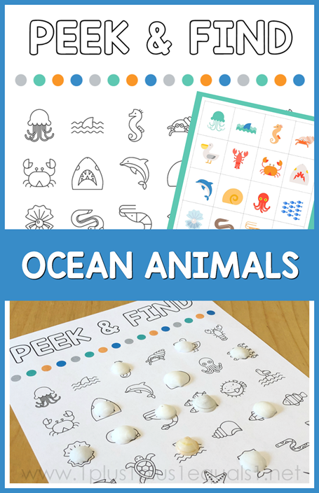 Peek and Find Ocean Animals
