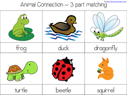 Scoot Kindergarten Literature Unit (11)