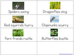 Scoot Kindergarten Literature Unit LITERACY (8)