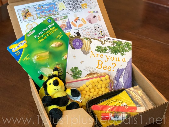 Ivy Kids Kits Bees