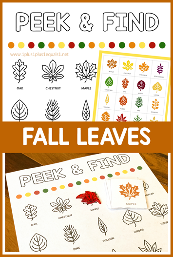 Peek and Find Fall leaves