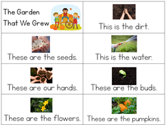 Pumpkin Kindergarten Literature Unit Printables (27)