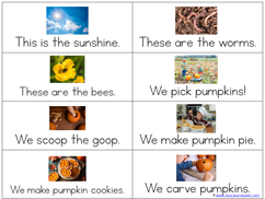 Pumpkin Kindergarten Literature Unit Printables (28)