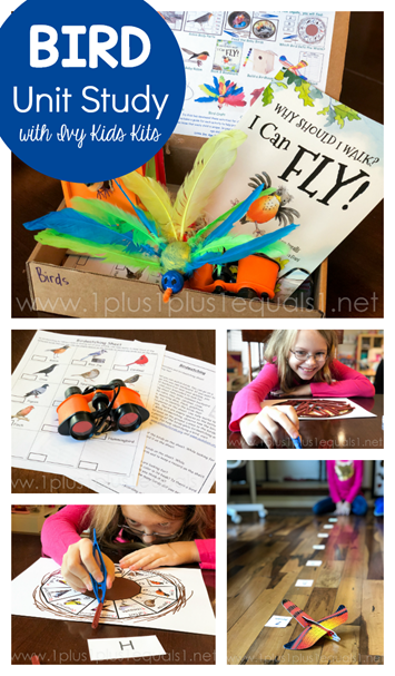 Bird Unit Study with Ivy Kids kits
