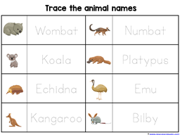 Wombat Divine Kindergarten Literature Unit (10)
