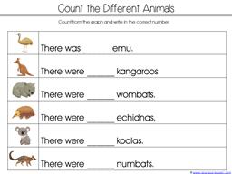 Wombat Divine Kindergarten Literature Unit (17)