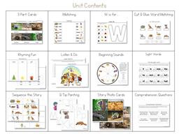 Wombat Divine Kindergarten Literature Unit (2)