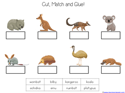 Wombat Divine Kindergarten Literature Unit (37)