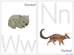 Wombat Divine Kindergarten Literature Unit (42)